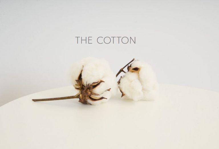 What Is Supima Cotton